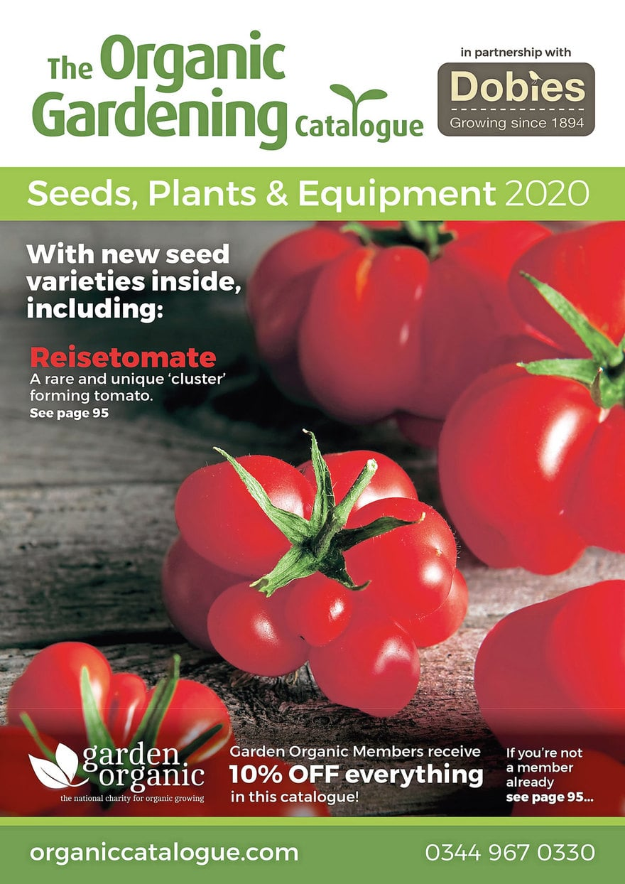 2019/2020 Catalogues published in Kitchen Garden