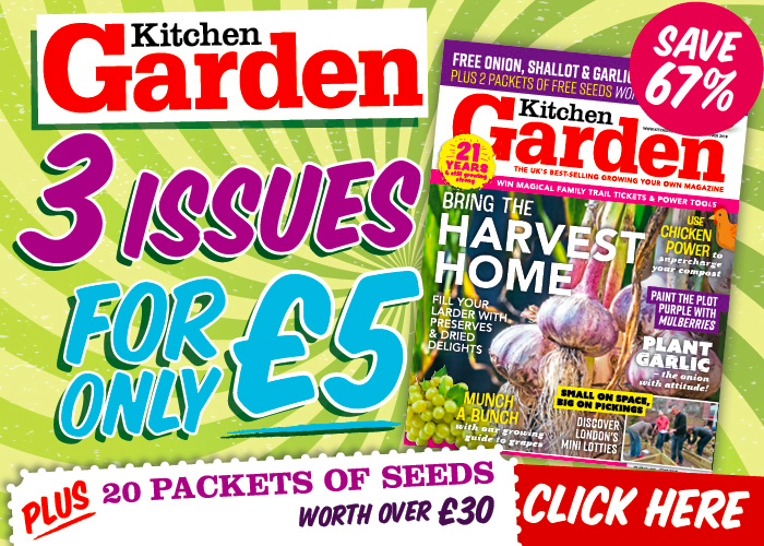Kitchen Garden Promotion